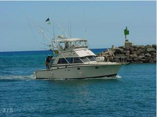 Aikane sport fishin llc in honolulu hawaii us sport for Honolulu fishing charters
