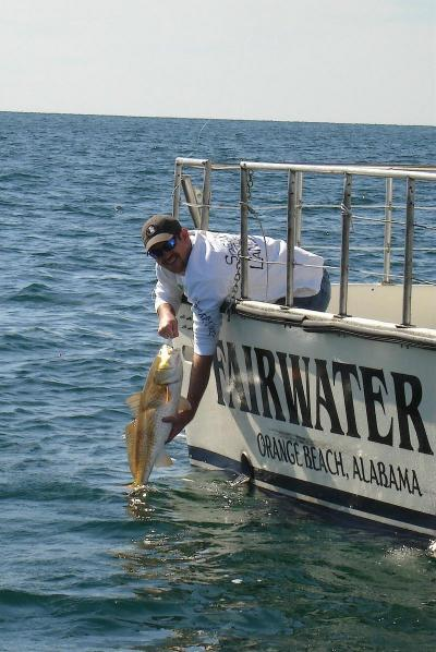 Fairwater ii charters in orange beach alabama us sport for Fishing in gulf shores