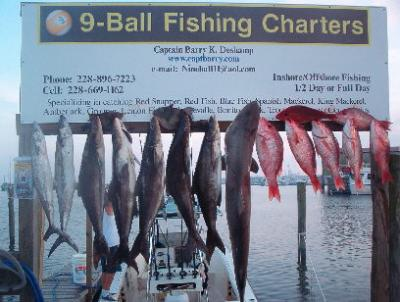9 ball fishing charters in gulfport mississippi us