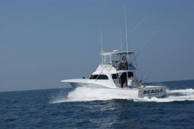Beagle charters in morehead city north carolina us for Fishing morehead city nc
