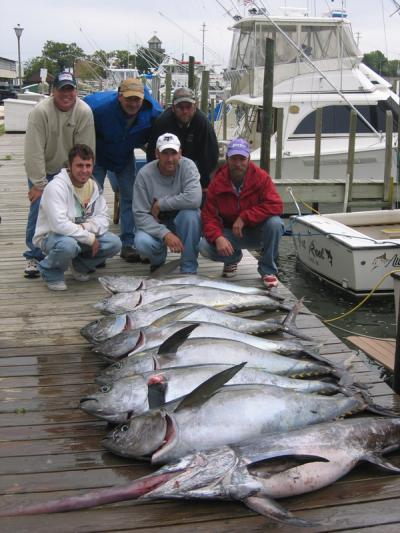 tranquila sport fishing in lewes delaware us sport